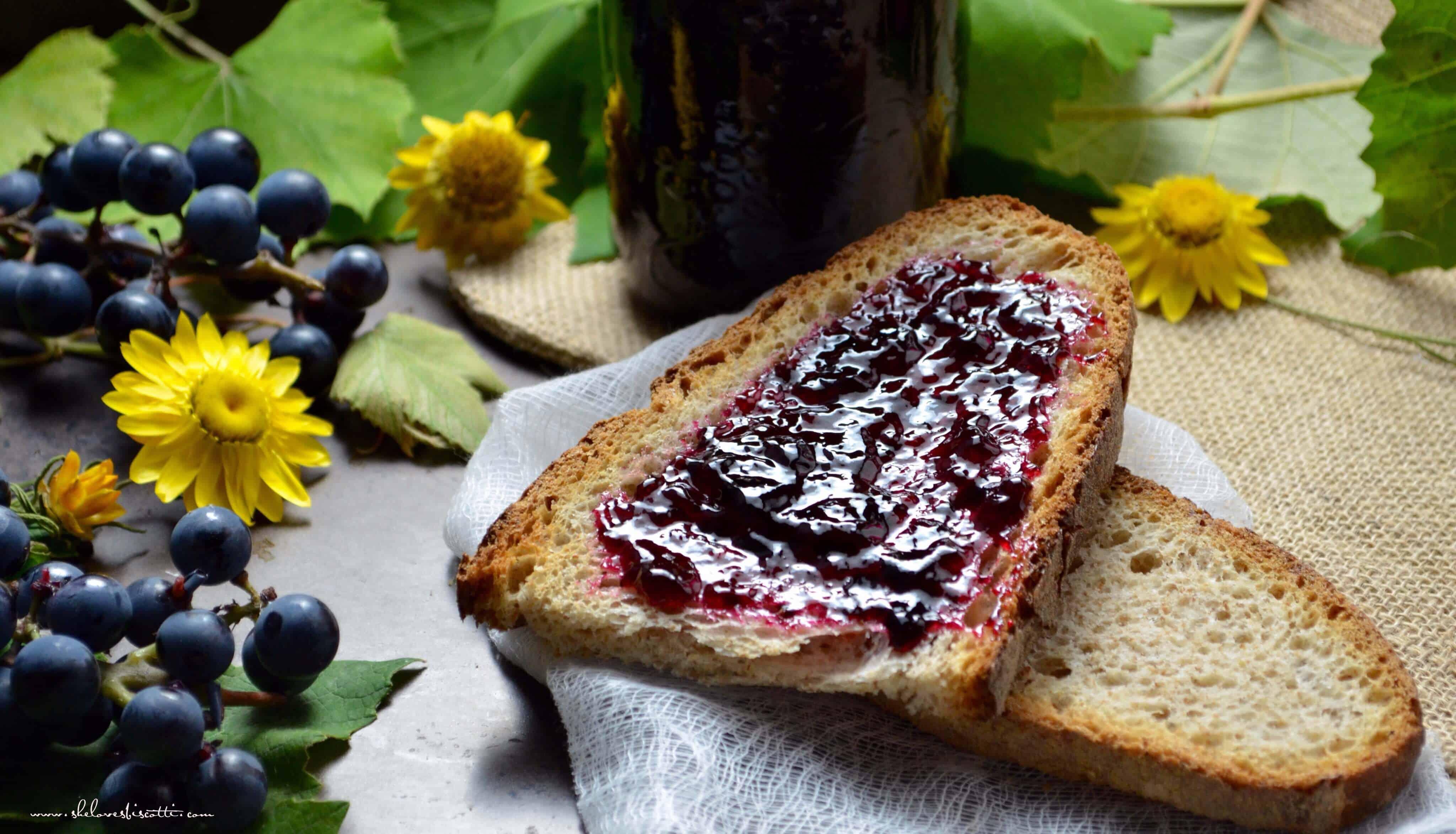 Homemade Concord Grape Jelly -A Step by Step Tutorial