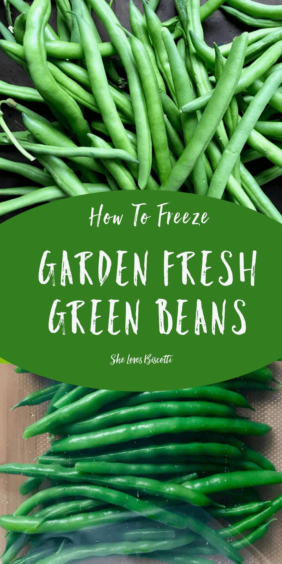 How to Freeze Garden Fresh Green Beans