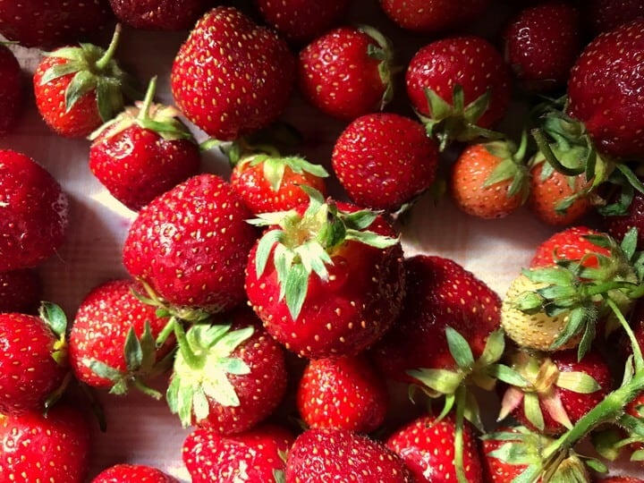 Bright red fresh strawberries with the stems attached.