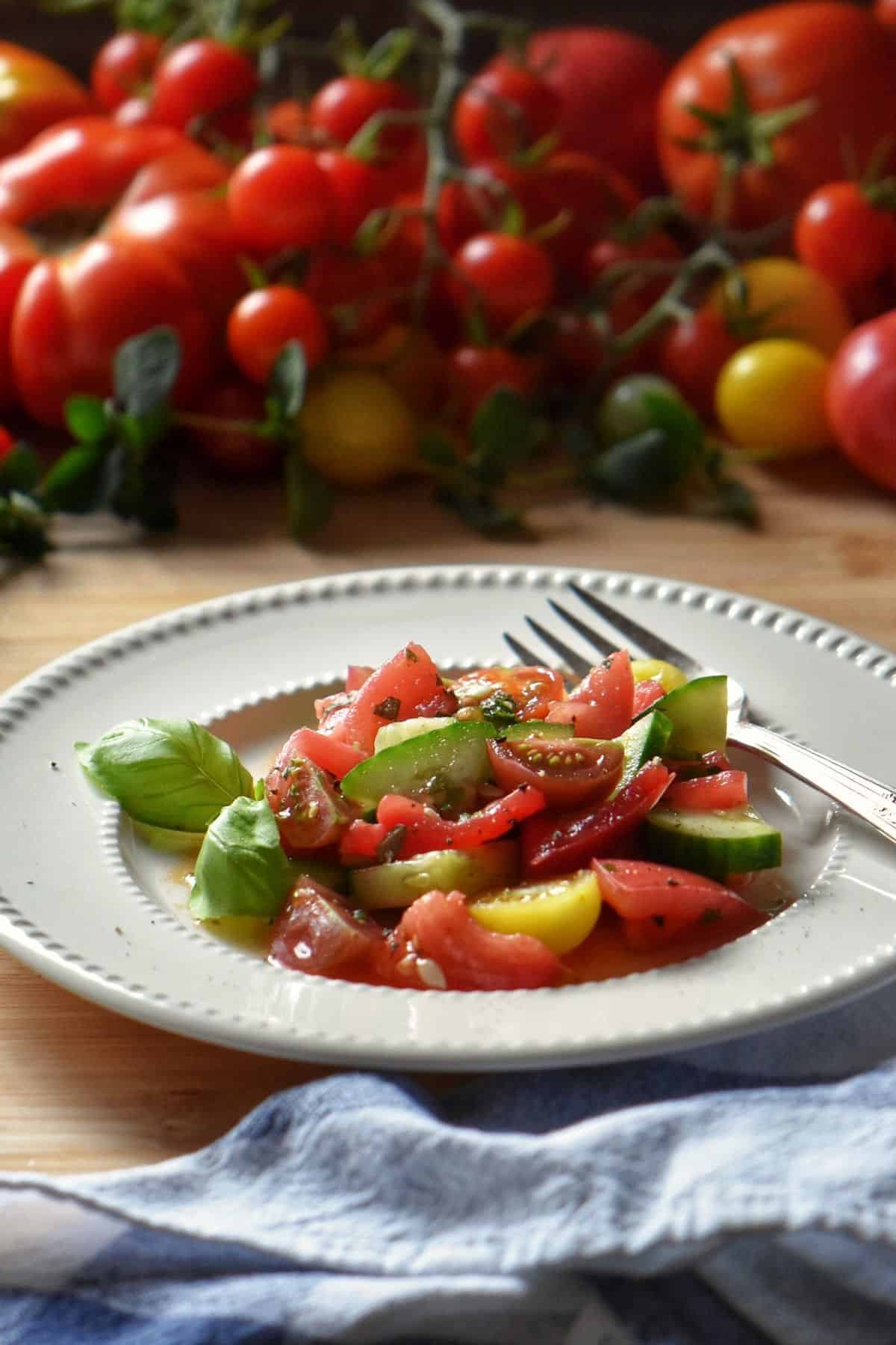 Tomato cucumber salad in a white plate; in the background a variety of fresh tomatoes.