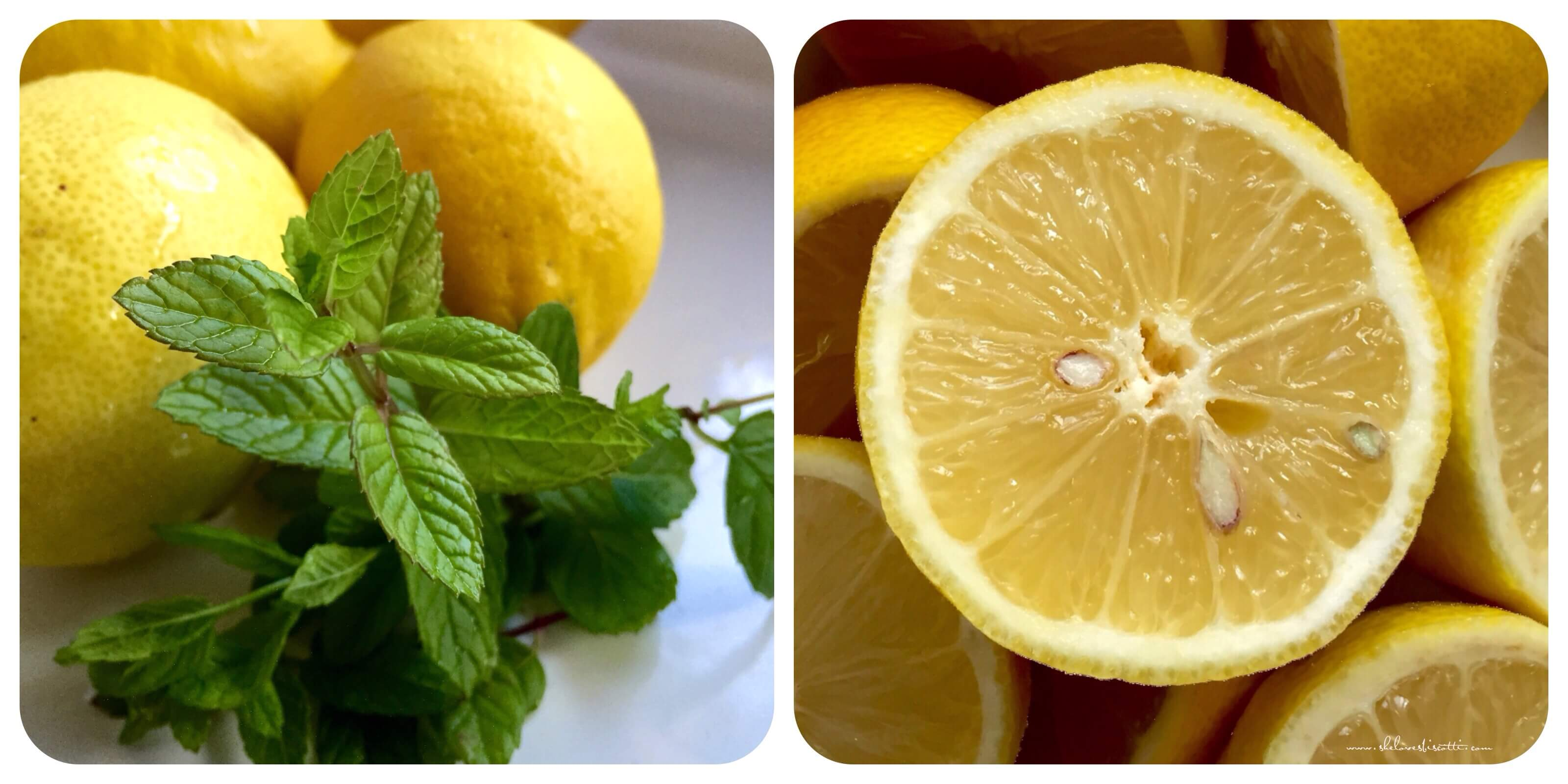 lemons and mint required to make lemon ice.