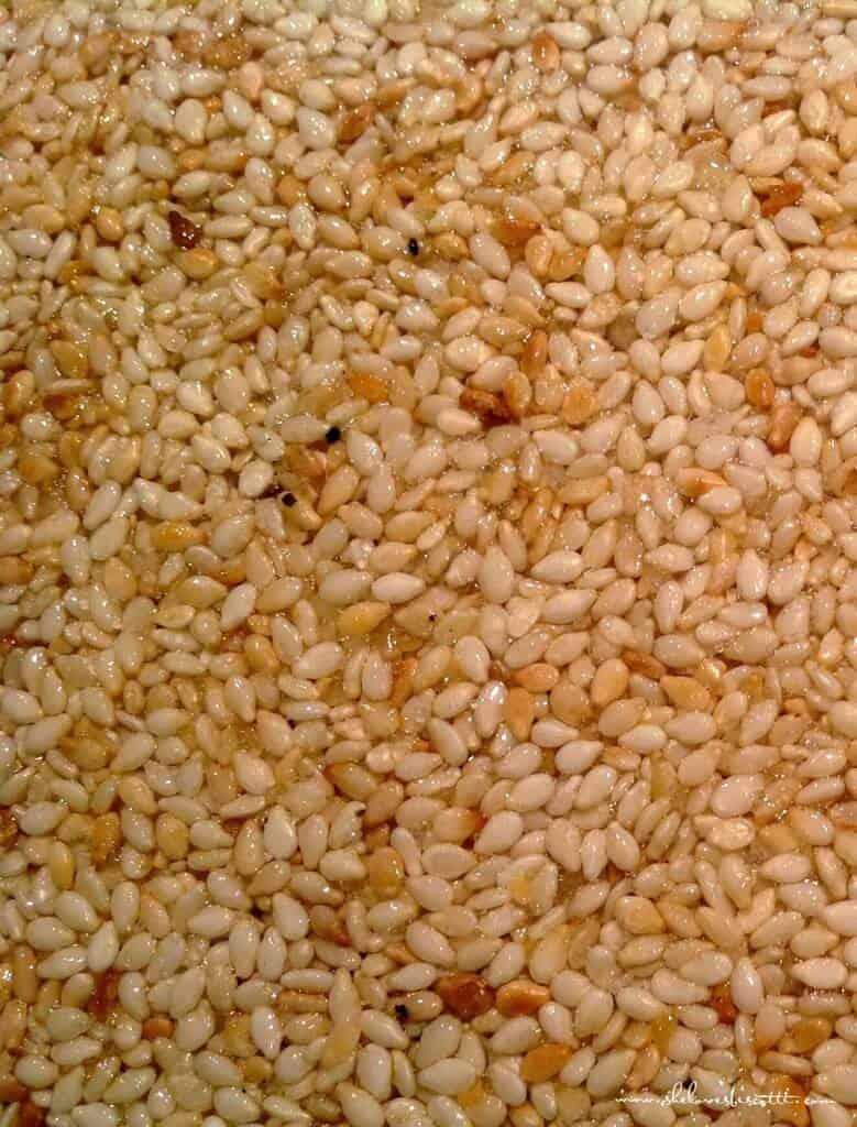 Sesame Seed Nougat