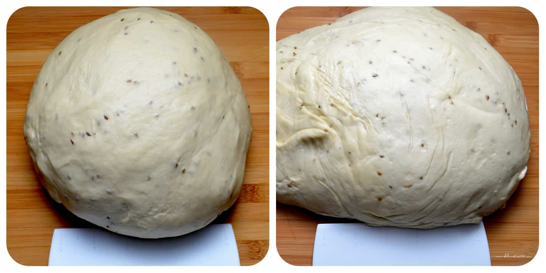 A photo collage of the taralli dough doubled in size.