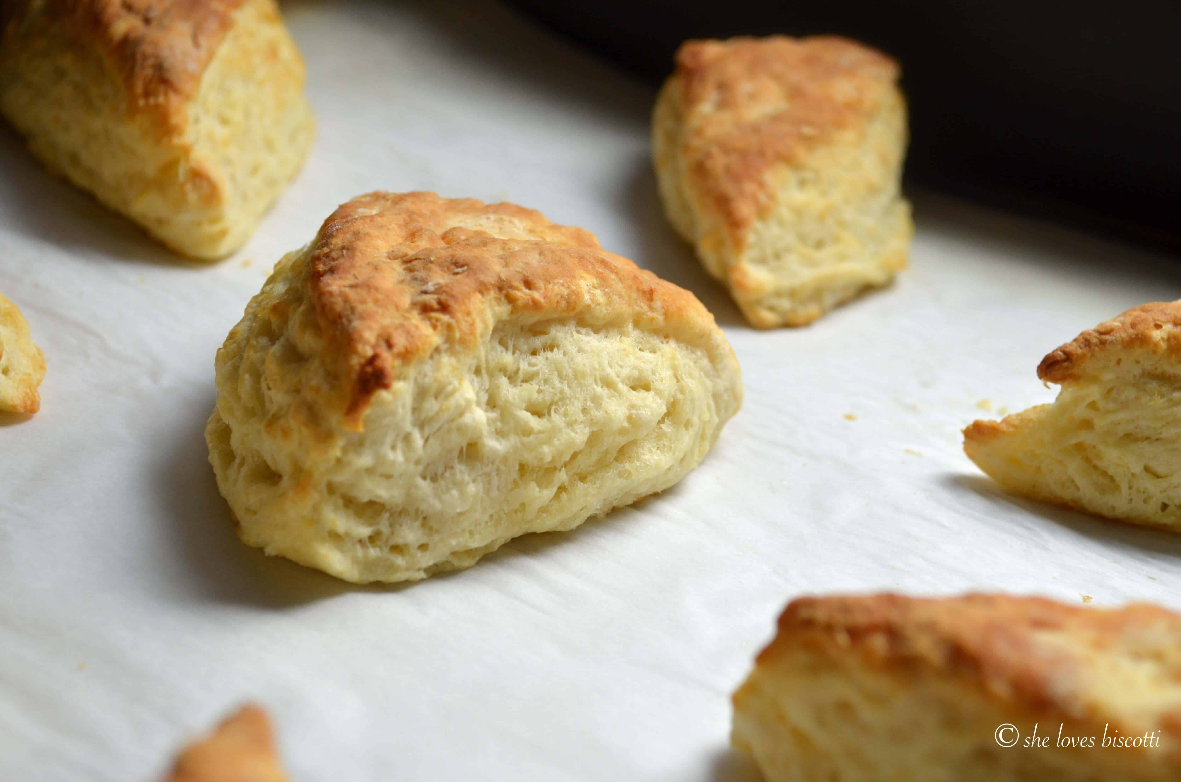 Buttermilk biscuits on a parchment lined baking sheet.