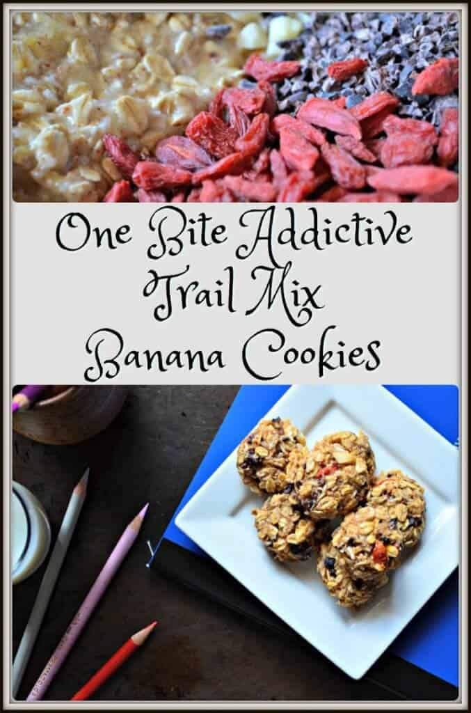 One Bite Addictive Trail Mix Banana Cookies
