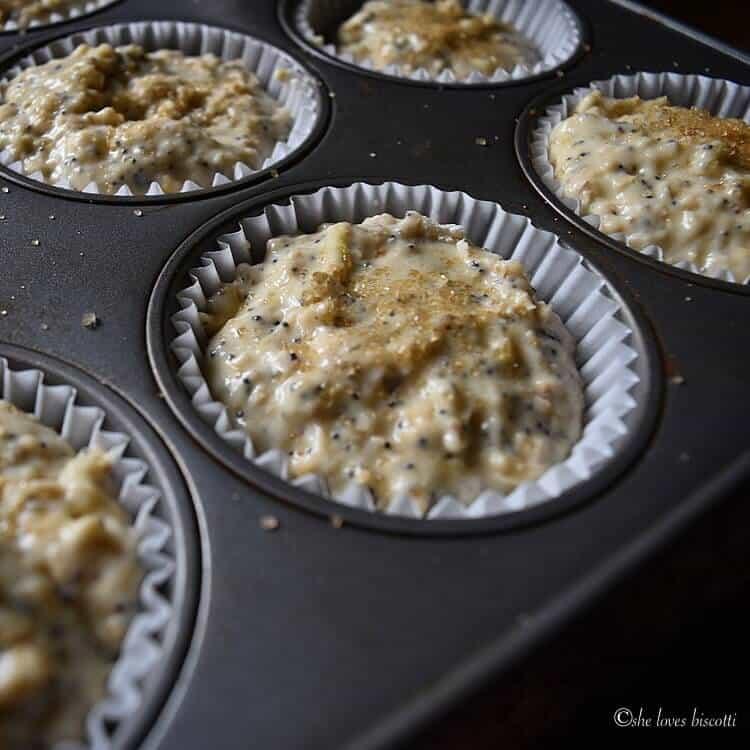 Buttermilk Oatmeal Muffins portioned in muffin cups.