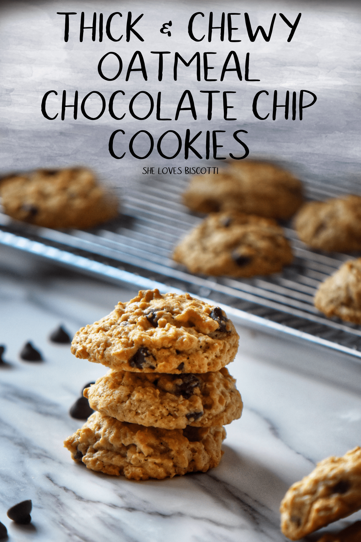 Thick and Chewy Oatmeal Chocolate Chip cookies aka the only chocolate chip cookie you will ever need!#shelovesbiscotti #oatmeal #oatmealchocolatechipcookies #oats #oatmealcookies #nomnomnom #oatmealcookies #easybaking #quickoats