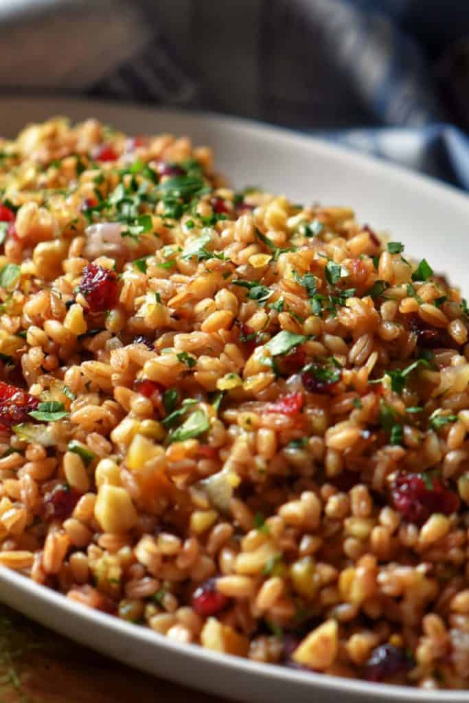 A colorful fall farro salad in a white serving platter.