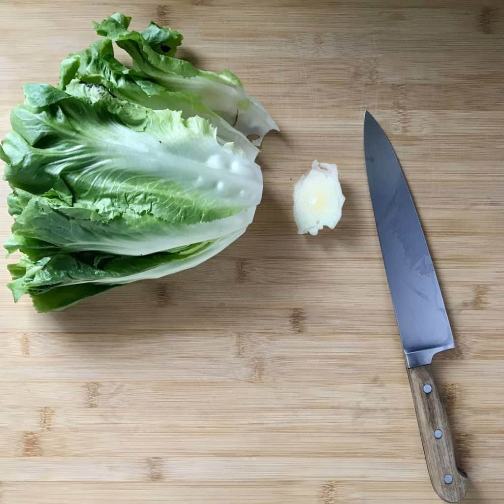 Escarole on a wooden board with the end trimmed off.