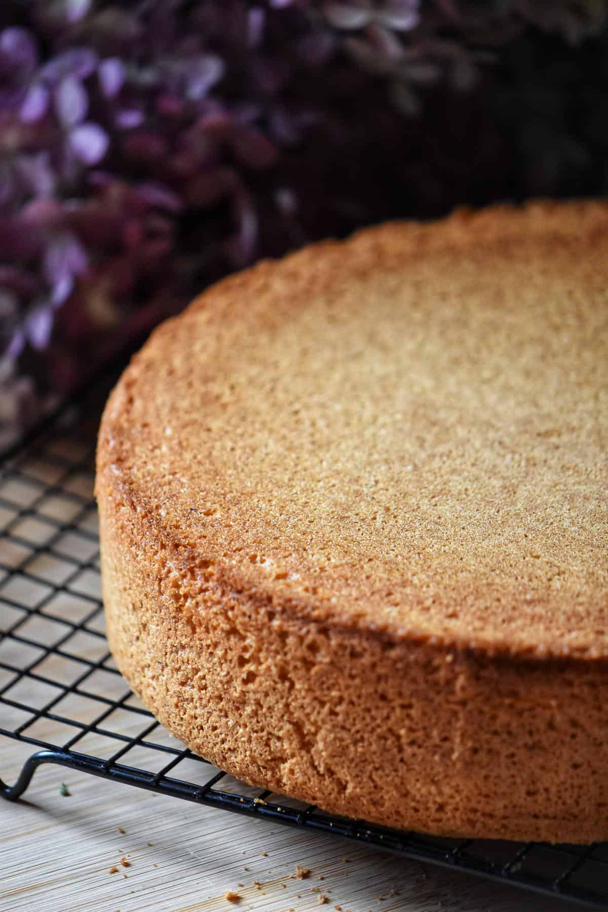 A sponge cake on a cooling rack.