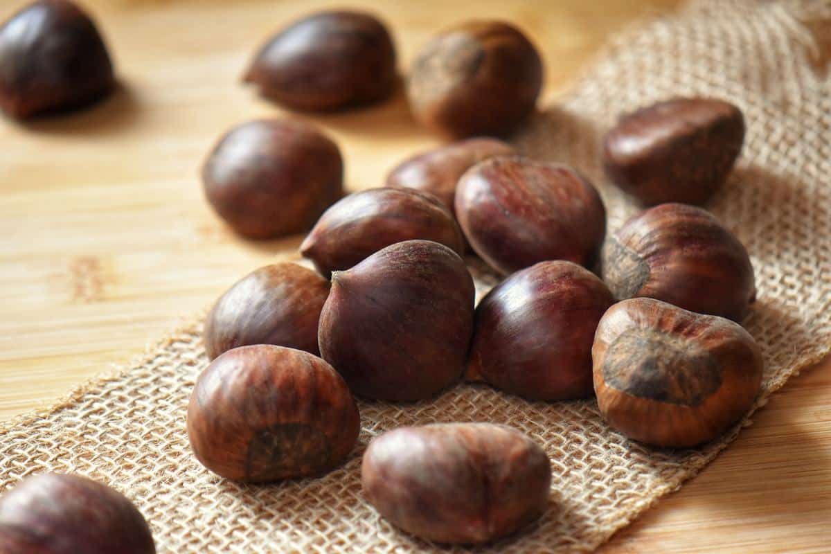 Fresh chestnuts on a wooden board.