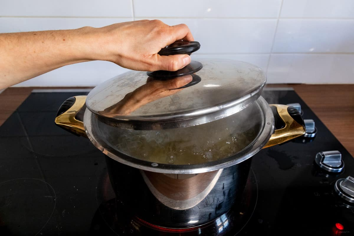 A lid covering a pot of water.