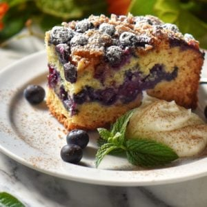 A slice of blueberry cake on a white plate.