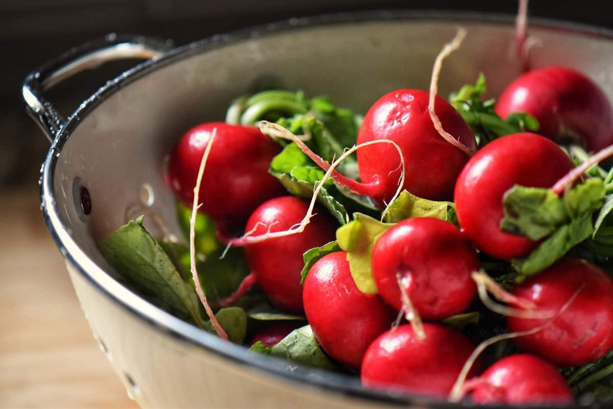 Radishes in a colander.