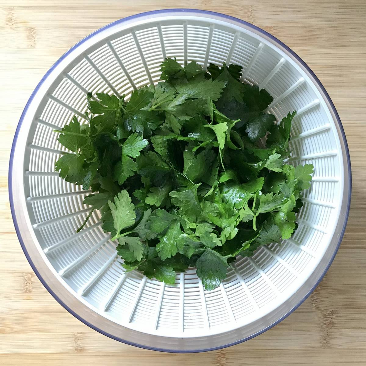 Fresh parsley in a salad spinner.