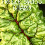 A close up photo of Swiss chard.