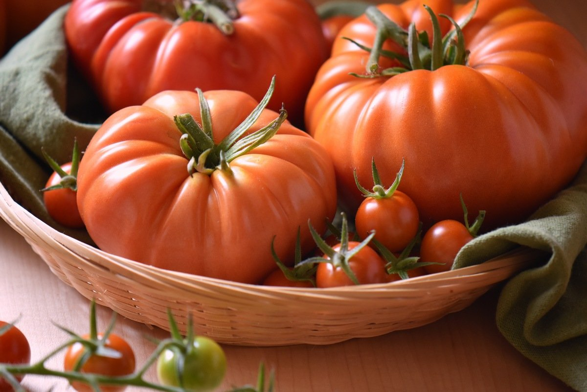 A variety of tomatoes in a wicker basket.