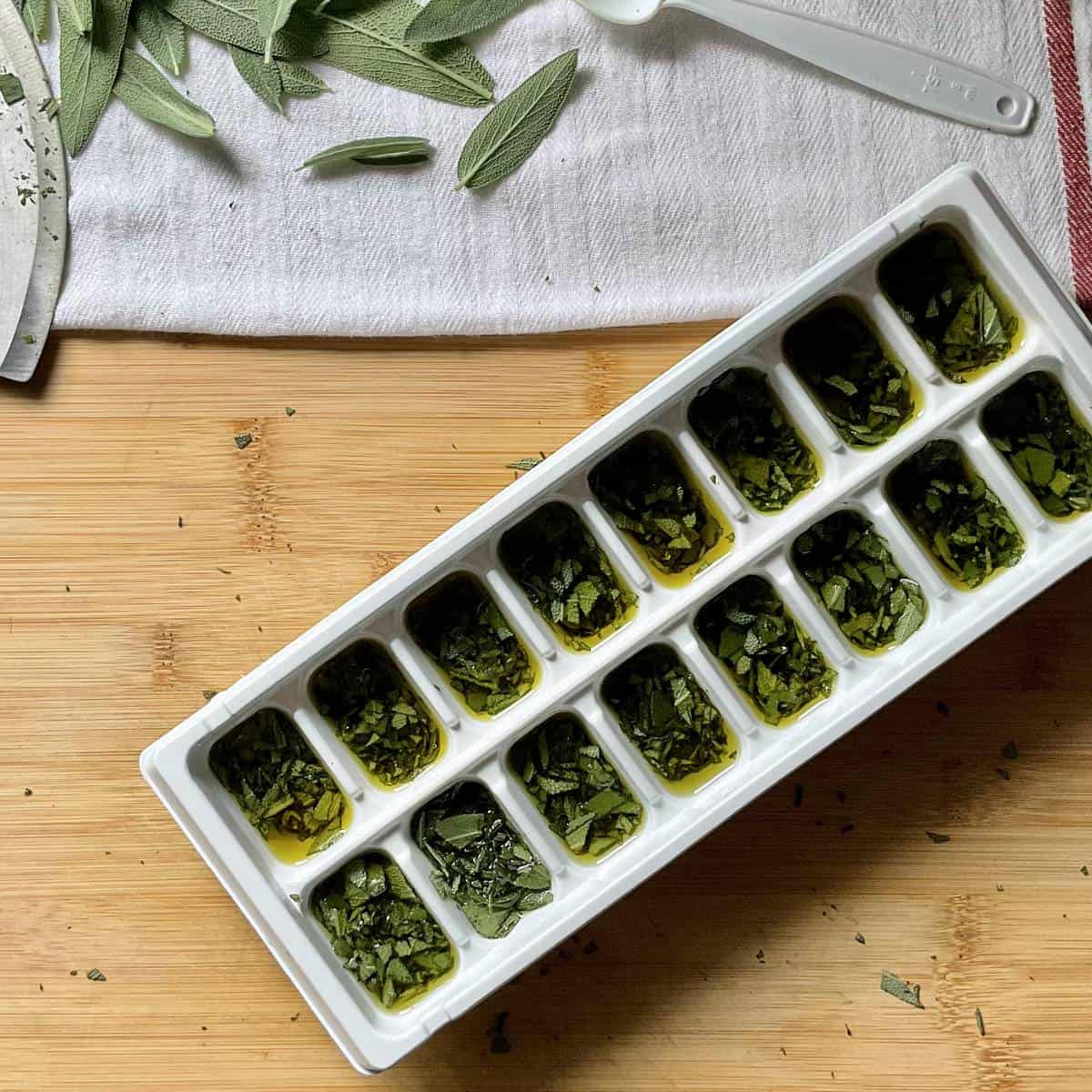An ice cube tray filled with fresh herbs.